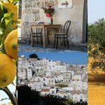 vacanze-nel-grgano-5-motivi-per-visitarlo